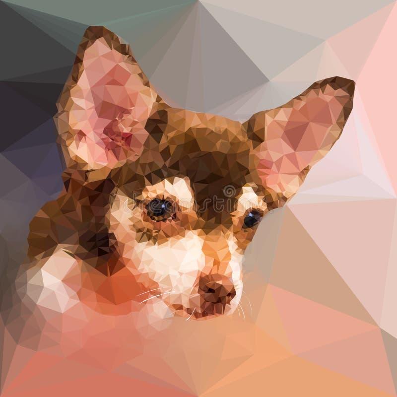 Baixo retrato geométrico poli do cão do chihuahu ilustração stock