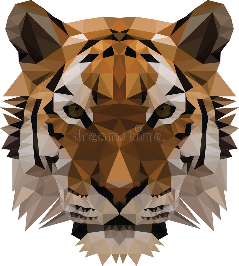 Baixo tigre poli ilustração do vetor
