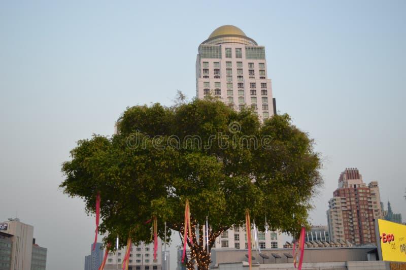 Baiyoke himmelhotell i Bangkok royaltyfri fotografi