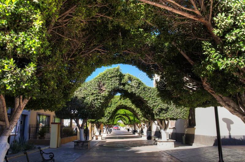 baja California loreto Mexico sur miasteczko zdjęcia royalty free