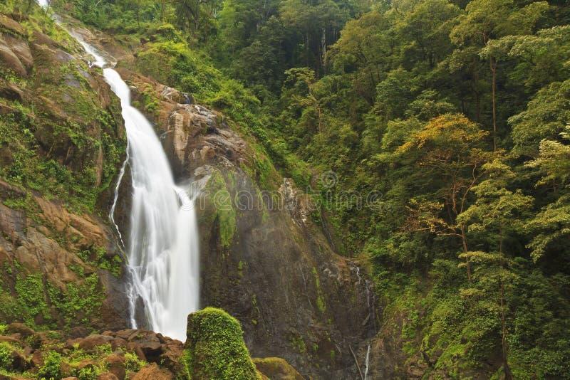 Baje a Catarata Manantial de Agua Viva imagenes de archivo