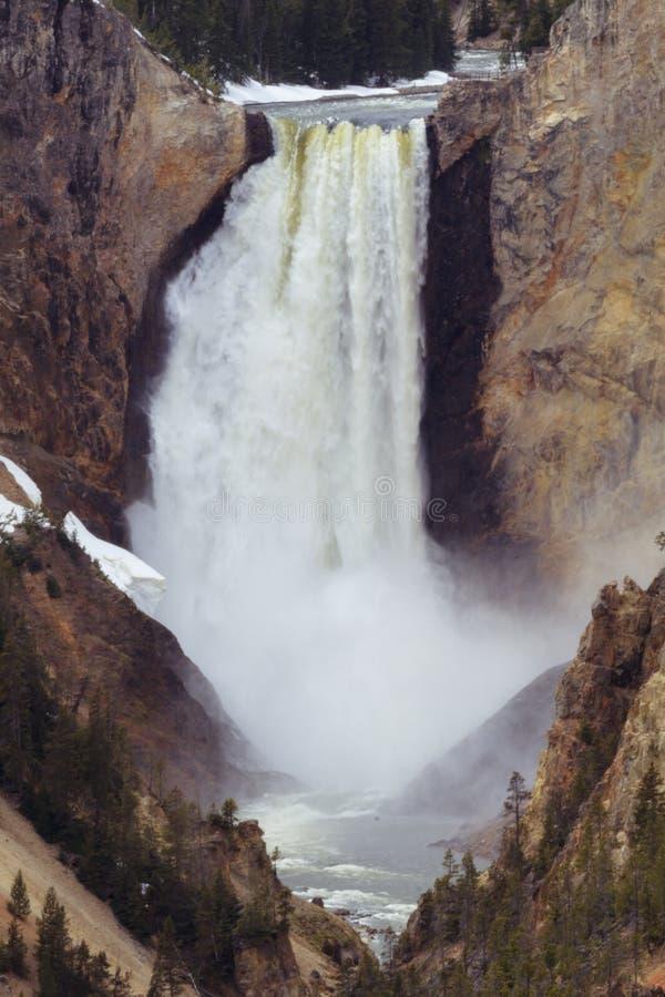 Baje las caídas Grand Canyon del parque de Yellowstone foto de archivo