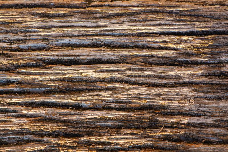 Bajecznie stara drewniana tekstura, piękna tekstura obraz stock
