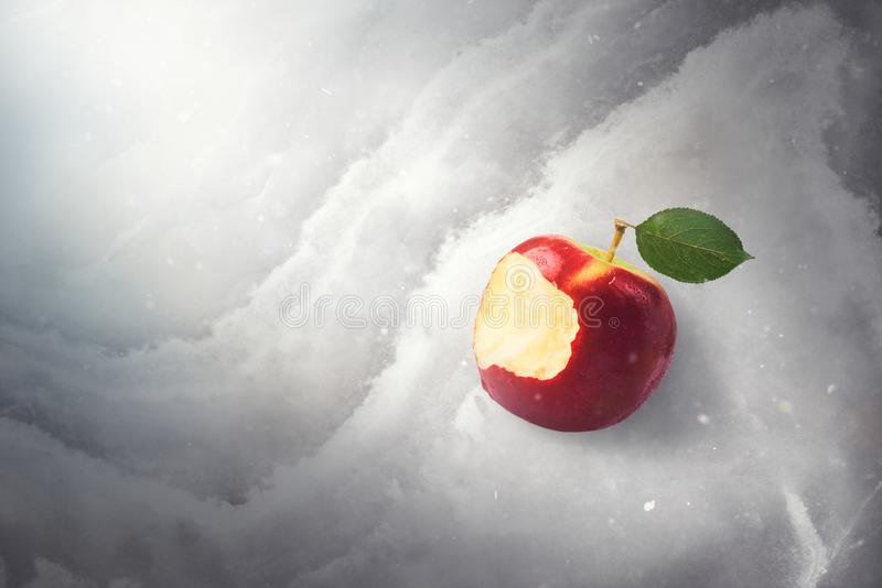 Bajki bajki pojęcie z strutym gryźć czerwonym jabłkiem kłaść dalej fotografia stock