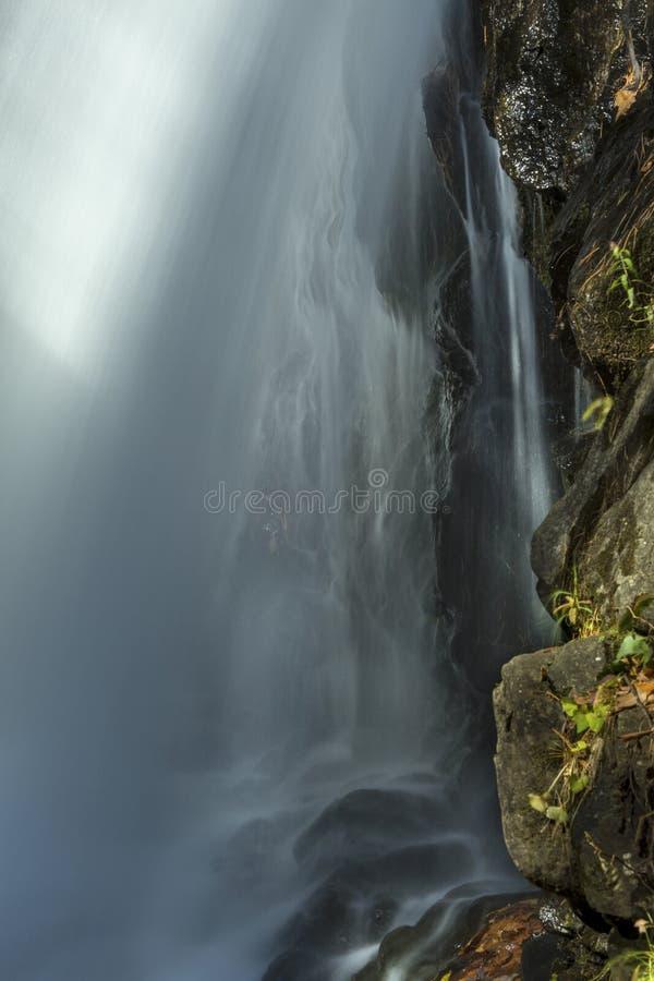 Bak av Campbell Falls med suddig rörelse av vattenfallet, royaltyfria foton
