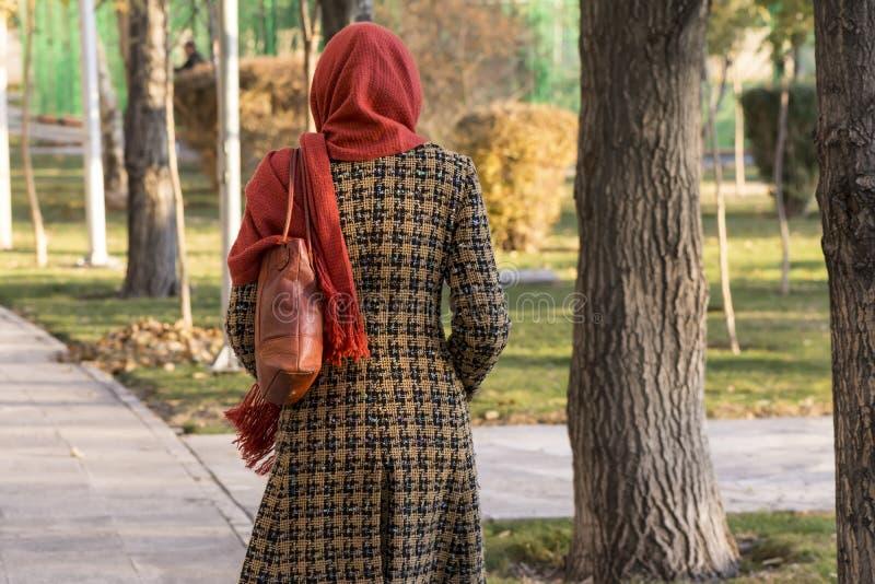 Bak av en muslimsk kvinna som går i en parkera i Teheran på soligt arkivfoto