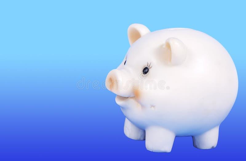 Bak Piggy fotografie stock