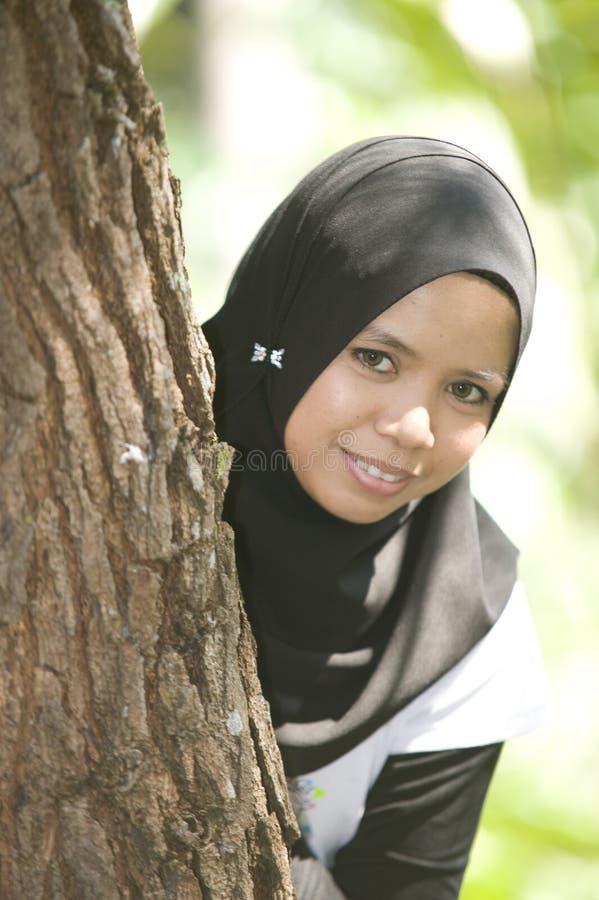 bak tree royaltyfri foto