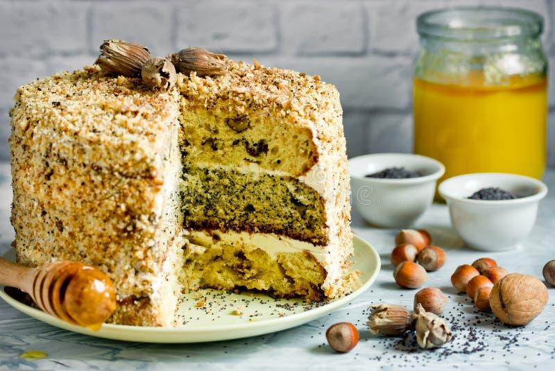 Baka ihop smetannik eller generalen - kaka för lager tre med muttern, vallmo och russinet royaltyfri bild