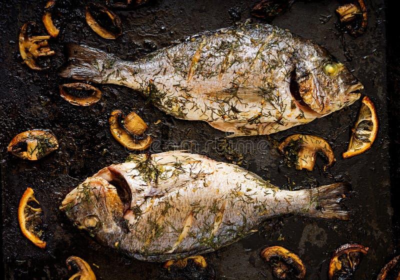 Bakad doradofisk i vitlökdillsås med champinjoner och citronen royaltyfri fotografi