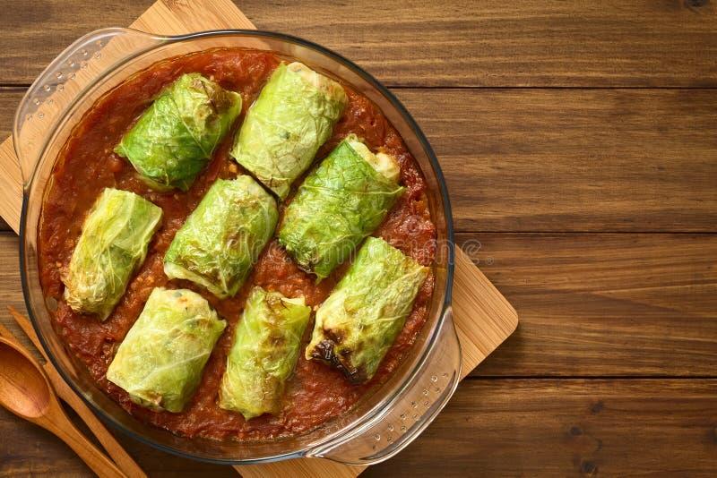 Bakad vegetarisk välfylld savojkål royaltyfria foton