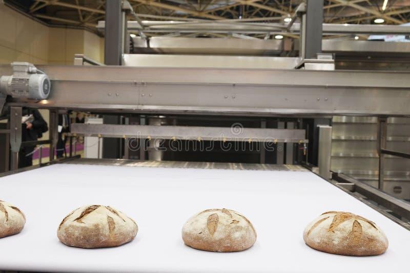 Bakade bröd på produktionslinje royaltyfri fotografi