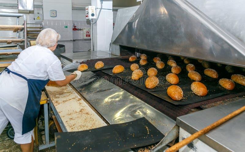 Bakade bröd på produktionslinjen på bagerit fotografering för bildbyråer