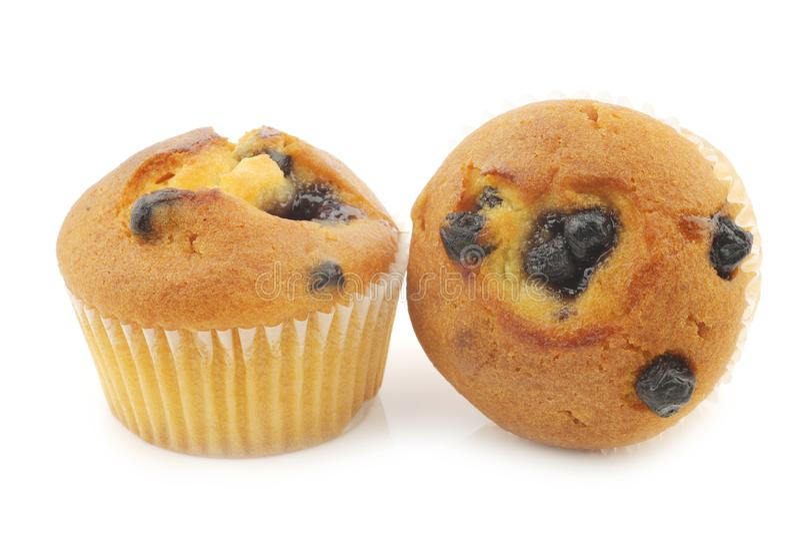 bakade muffiner för blåbär nytt arkivbild