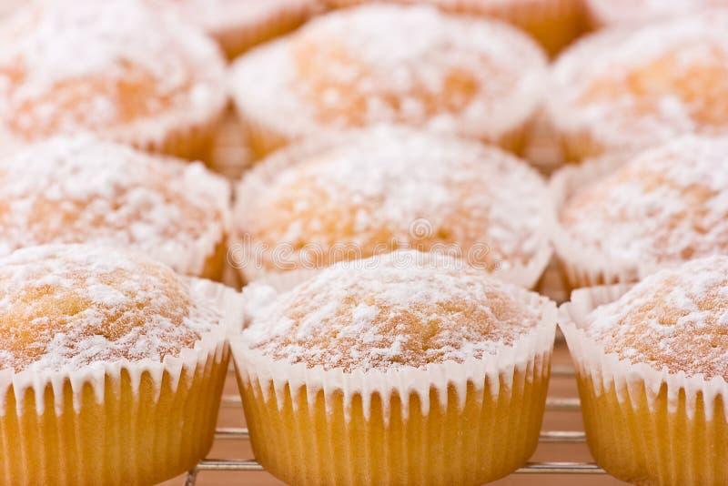 Bakade muffiner med damningen av florsocker överst. arkivbild
