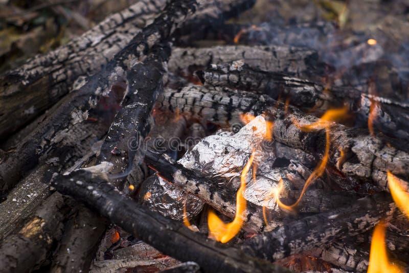 Bakade potatisar som slås in med aluminum folie som grillar i en brasa royaltyfri foto