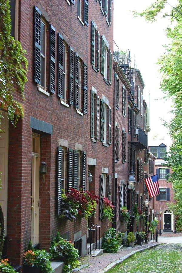 bakanu bostonu wzgórze obrazy royalty free