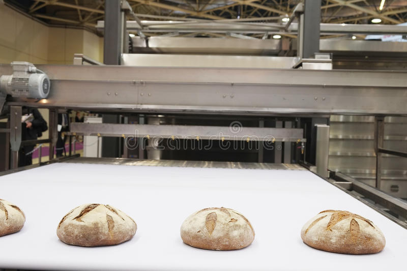 Baked breads on production line royalty free stock photography