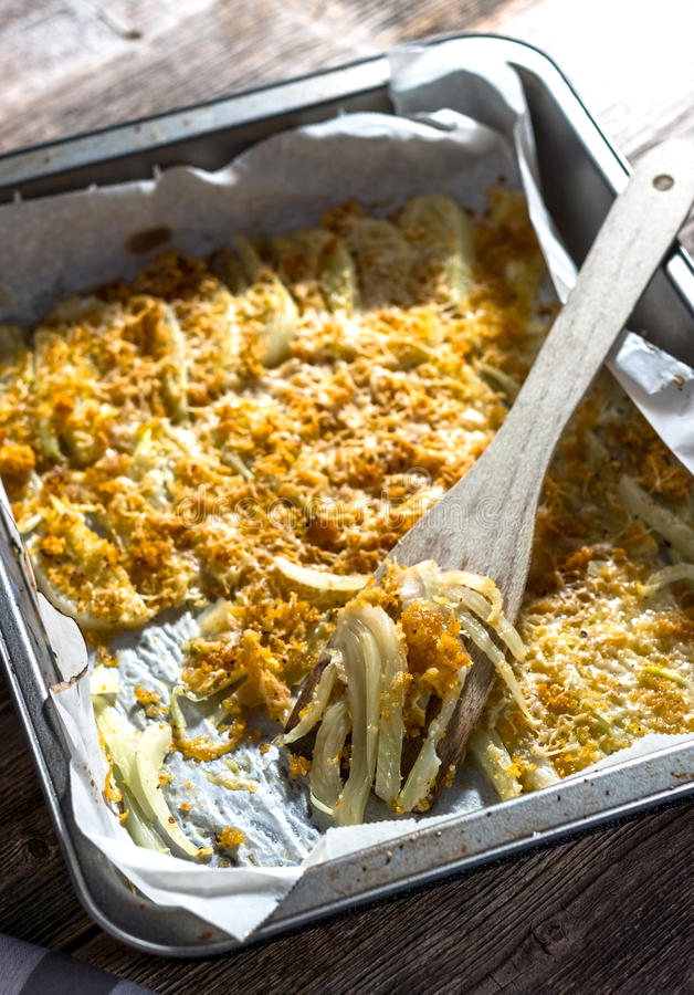 Baked Fennel with Parmesan stock photos