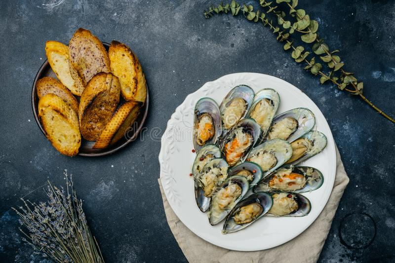 Baked green mussels with parmesan and garlic croutons on a white royalty free stock images