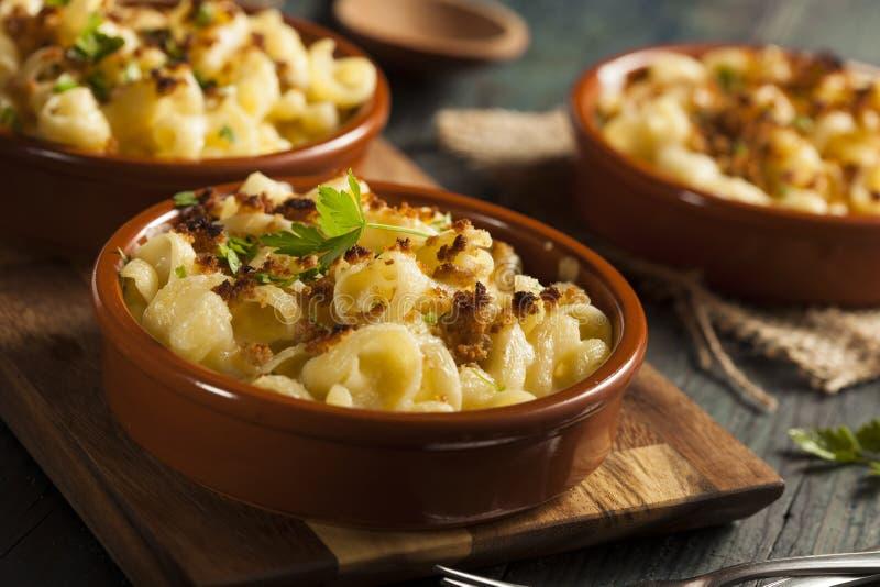 Baked Homemade Macaroni and Cheese stock photography