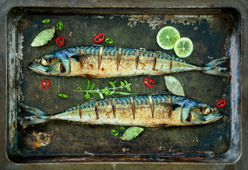 Baked mackerel fish on tray. Baked mackerel fish with lemon and spices on a tray royalty free stock photography