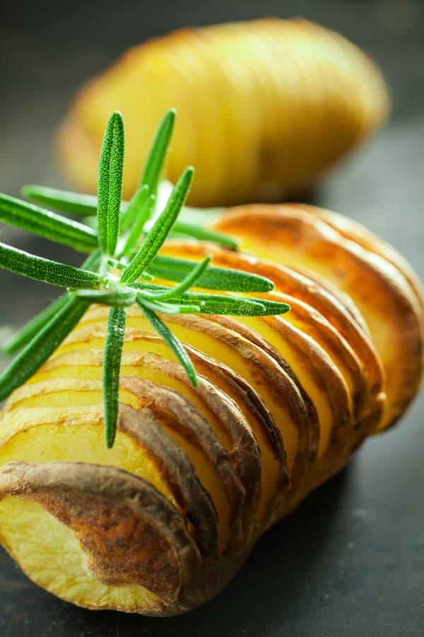 Baked potato and fresh rosemary royalty free stock photography