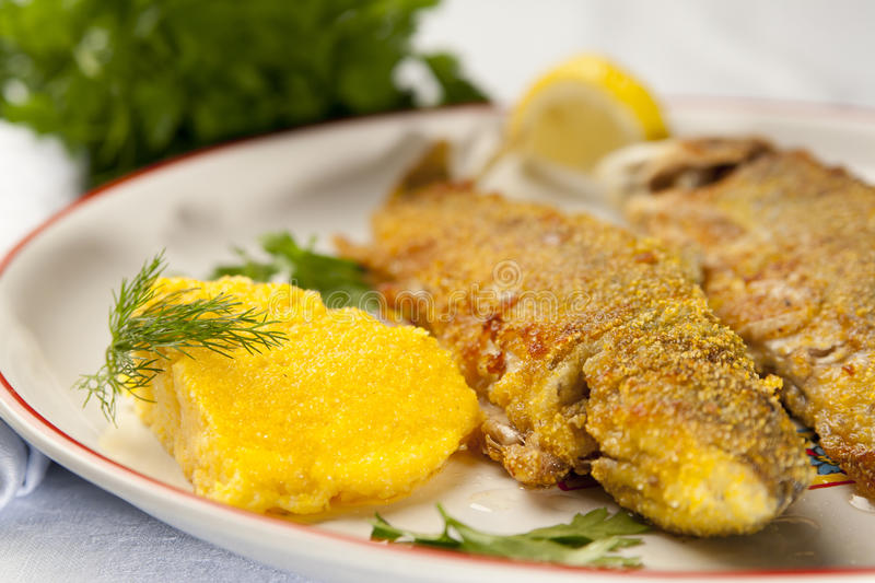 Baked rainbow trout with polenta royalty free stock photo
