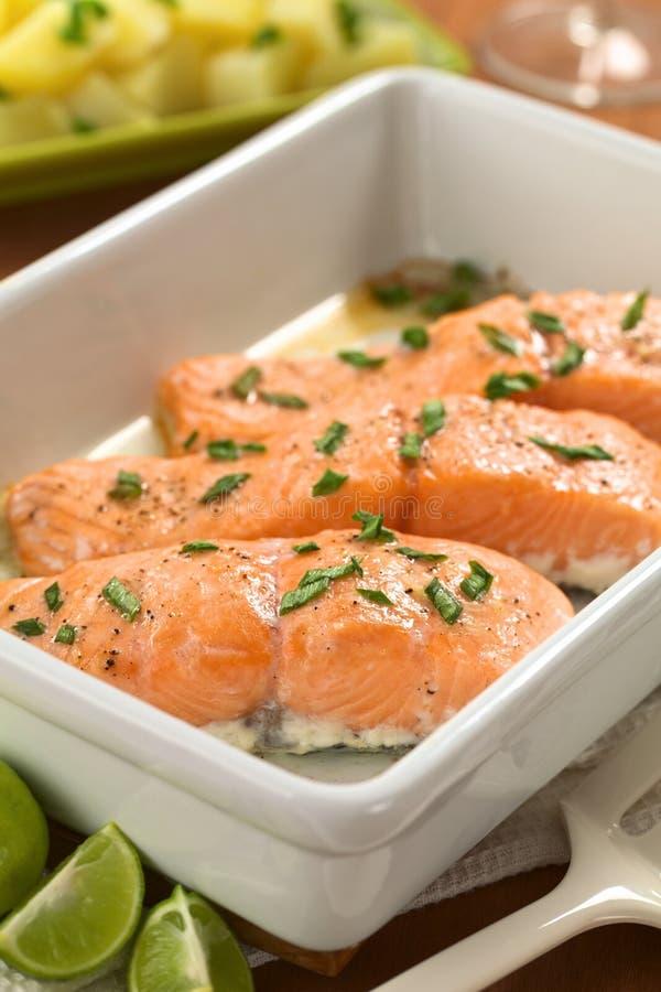 Download Baked Salmon stock photo. Image of gourmet, shallot, baking - 25882360