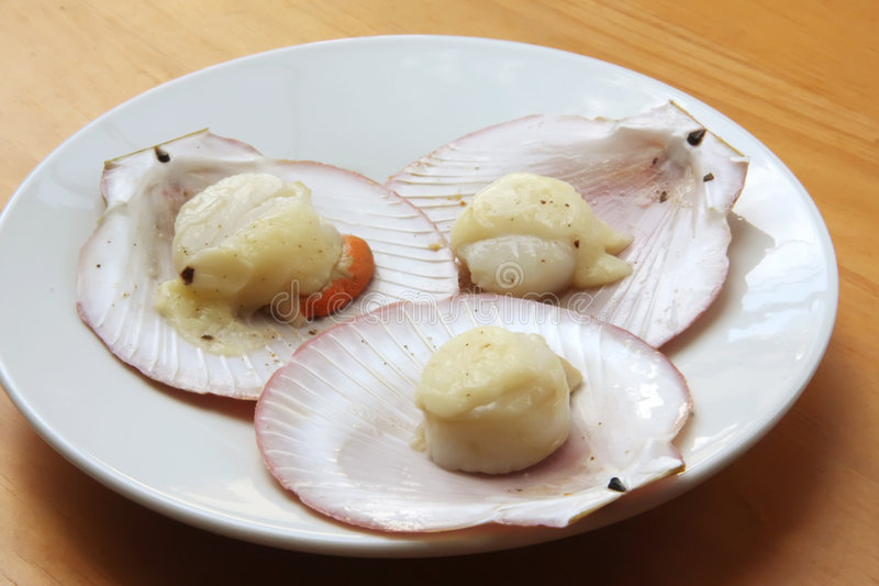 Baked scallops royalty free stock image
