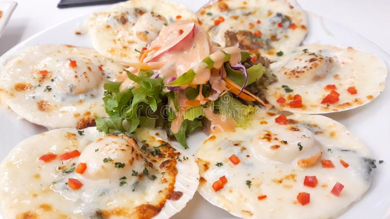 Baked scallops with cheese stock images