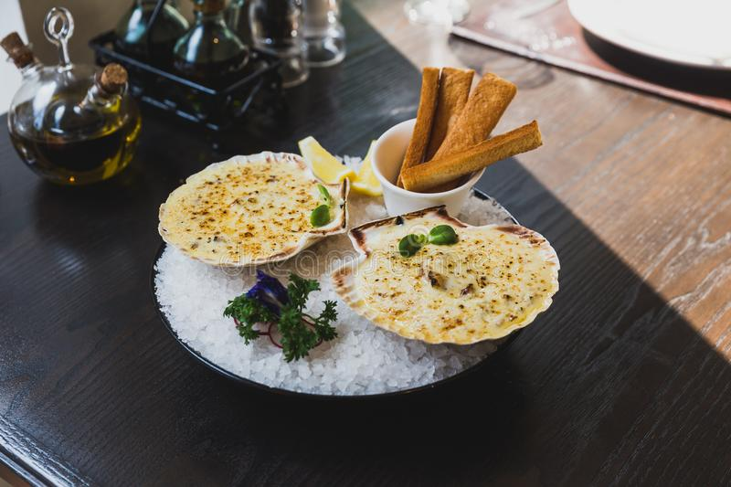 Baked scallops with cheese served with sliced lemon and bread sticks on bowl with full of sea salt royalty free stock photography