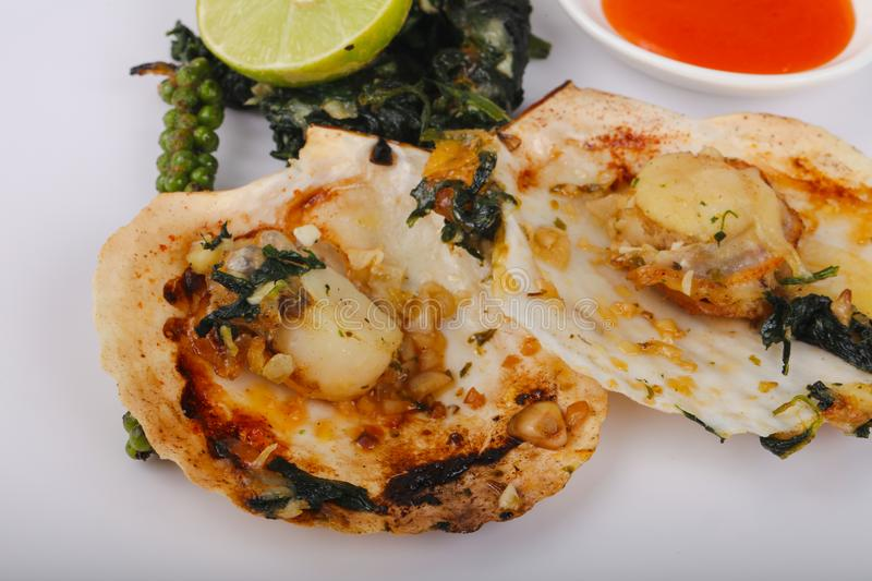 Baked scallops with spinach stock image