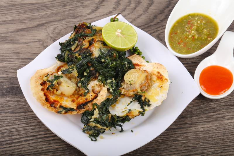 Baked scallops with spinach royalty free stock photos