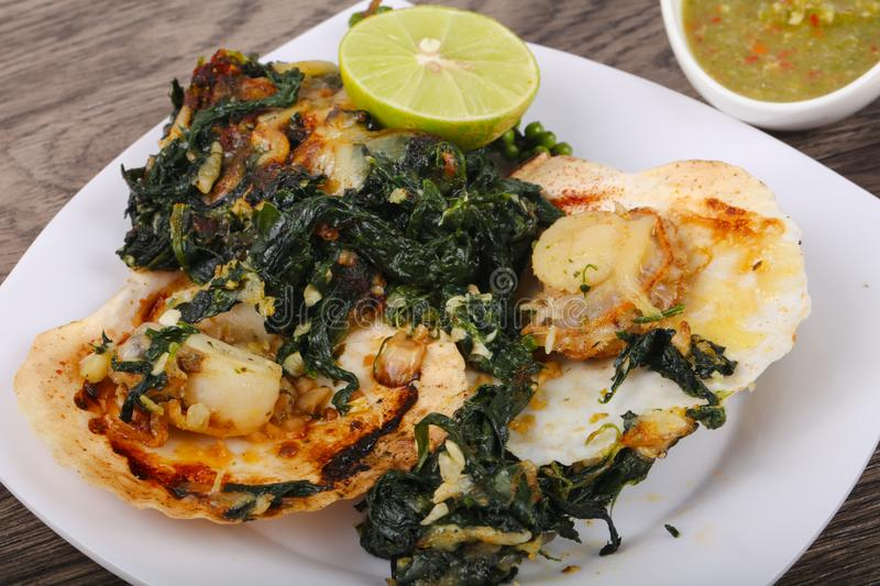 Baked scallops with spinach royalty free stock images