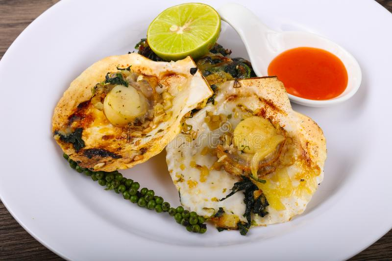 Baked scallops with spinach royalty free stock photography