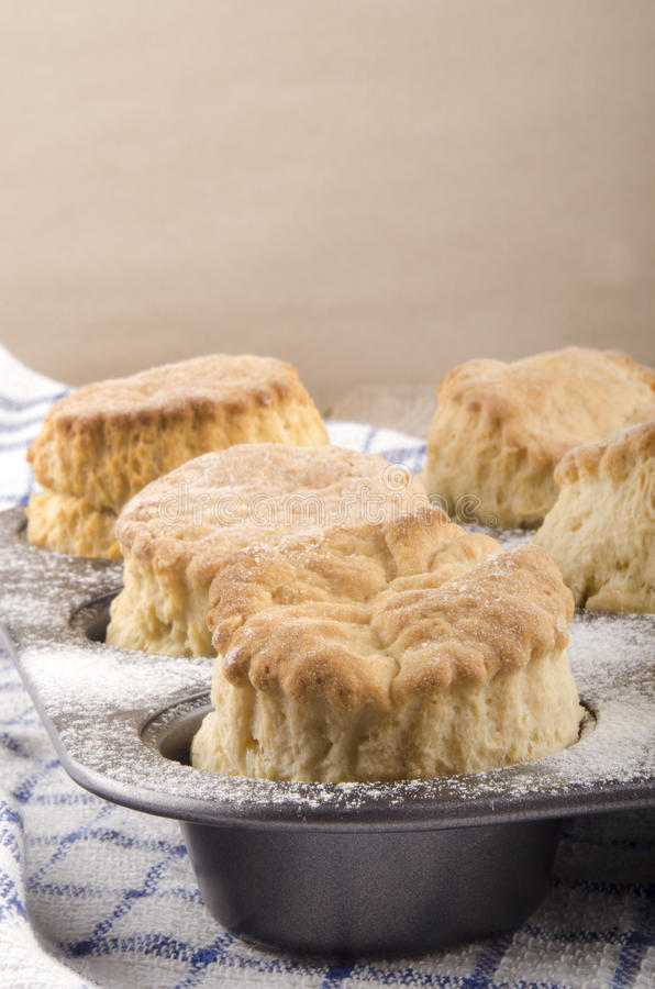 Baked scone in a baking tin. Freshly baked scone in a baking tin royalty free stock images