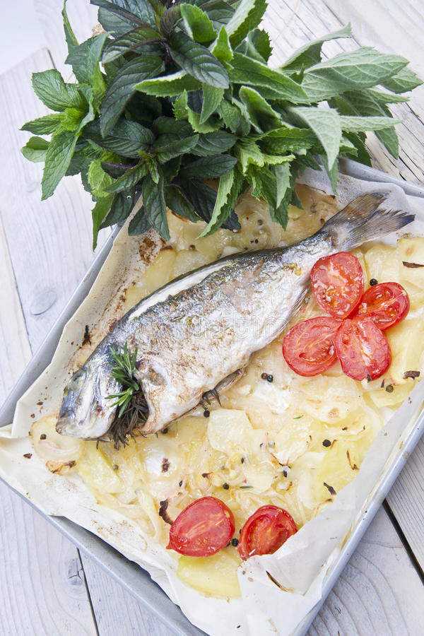 Download Baked Sea Bream stock photo. Image of prepared, potatoes - 33290288