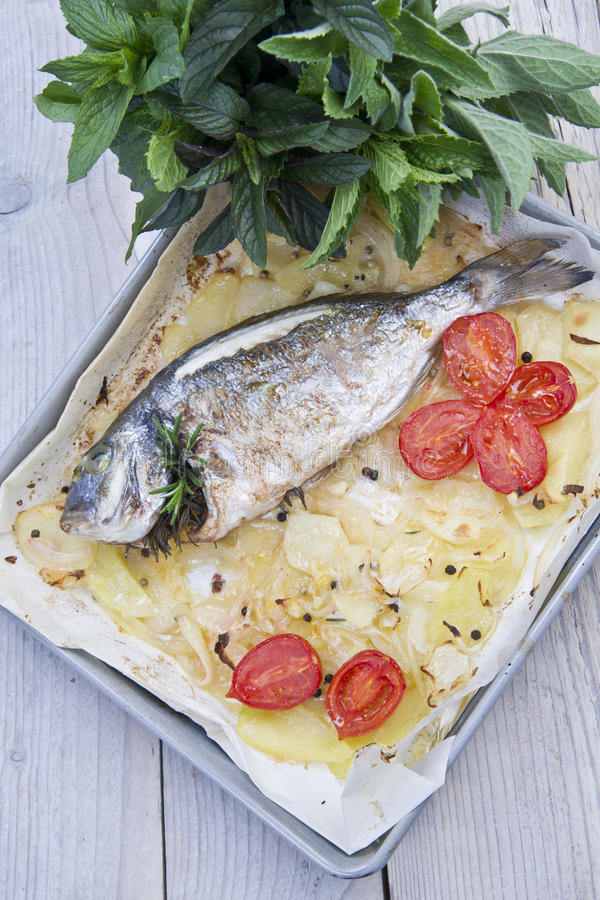 Download Baked Sea Bream stock photo. Image of prepared, plate - 33290370