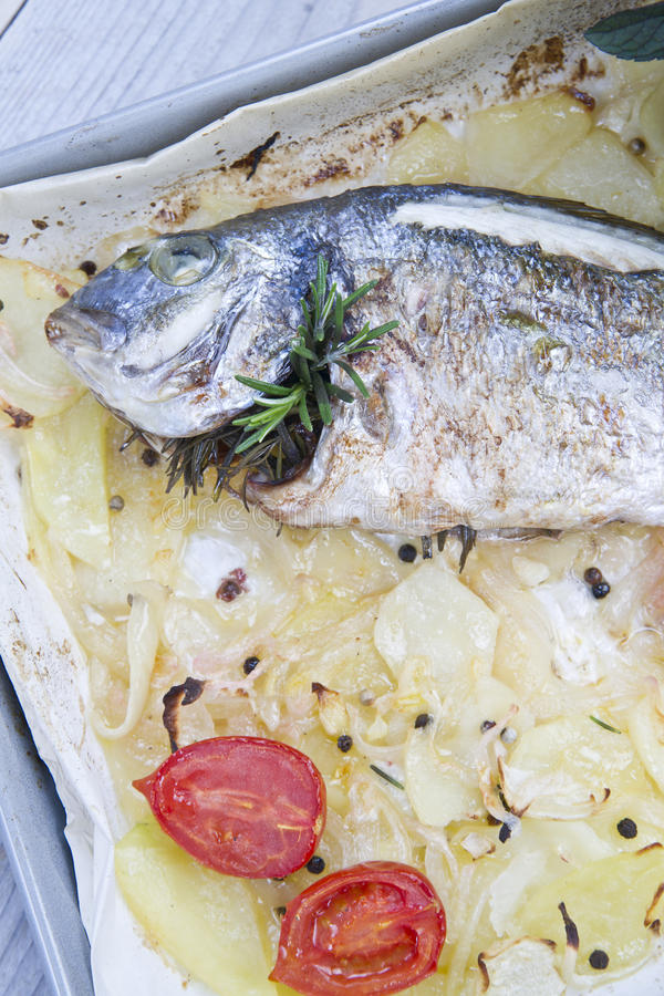 Download Baked Sea Bream stock photo. Image of garnish, meal, pepper - 33290388