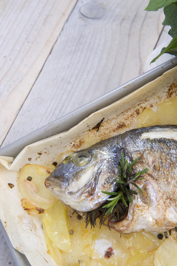 Download Baked Sea Bream stock image. Image of fried, black, plate - 33290459