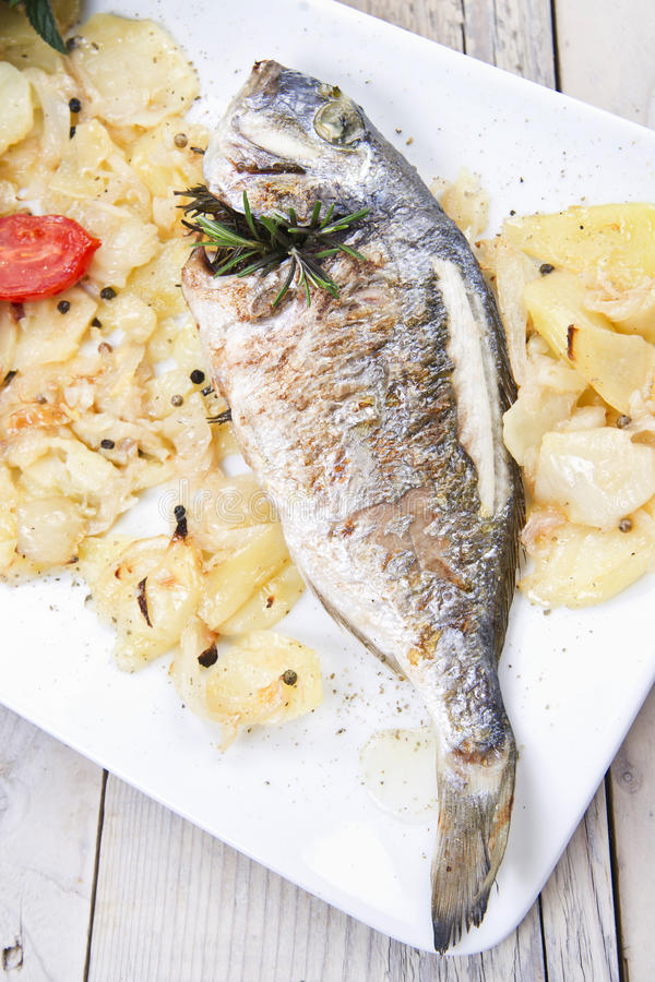 Download Baked Sea Bream stock photo. Image of gilt, dinner, healthy - 33290496
