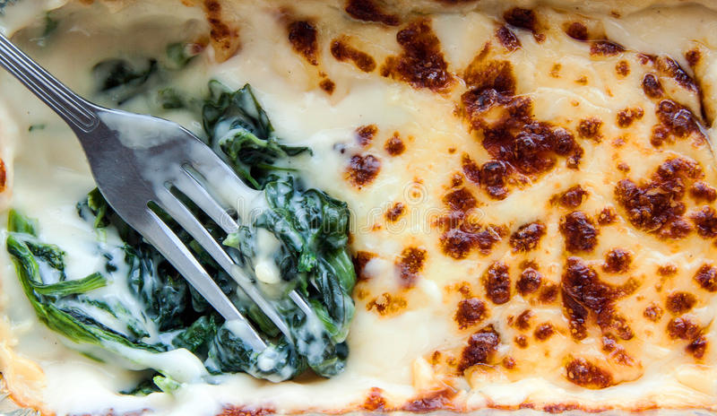 Baked spinach with cheese in froid package. Close up fork baked spinach with cheese in froid package on isolate stock photos