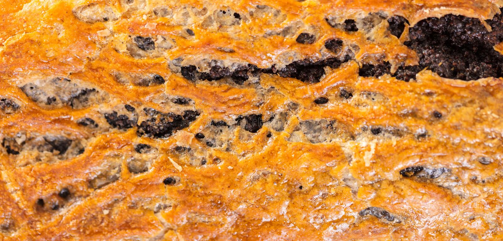 Baked strudel texture closeup royalty free stock photography
