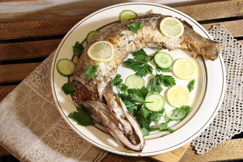 Baked stuffed fish luce with lemon and cucumber slices, parsley on white plate on wooden background stock photos