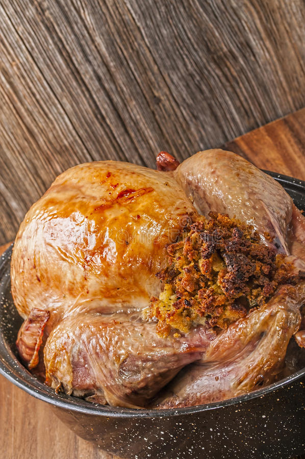 Baked,stuffed,Thanksgiving turkey in granite pan stock photography
