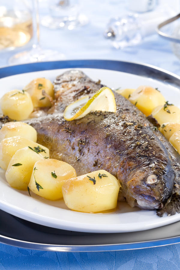 Download Baked trout stock image. Image of diet, natural, blue - 13378237