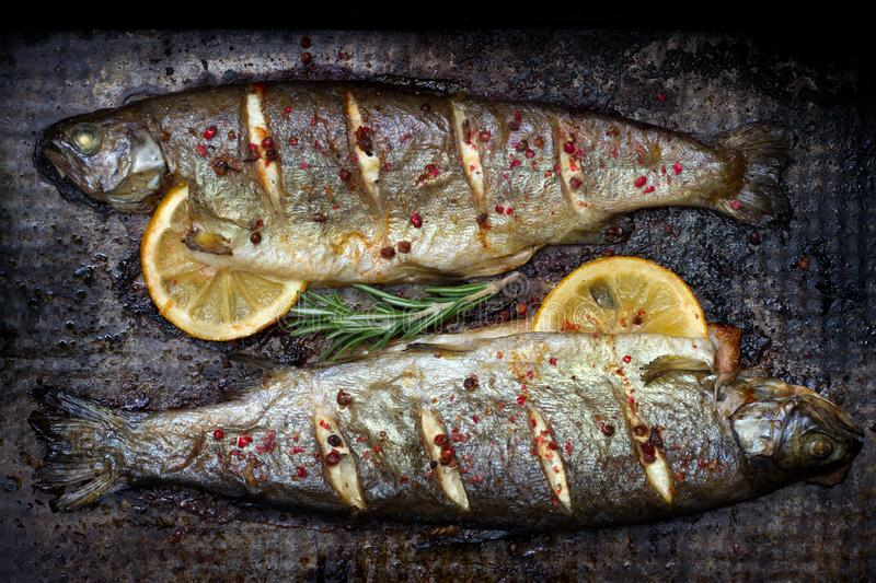 Baked trout fish with lemon and rosemary and spice on grunge metal plate still life. Closeup stock photo
