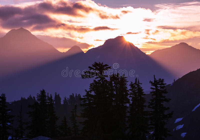 Baker Area. Mt. Baker recreation Area,USA royalty free stock photography