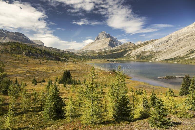 Baker Lake Autumn Landscape Banff National Park Canadian Rockies royalty free stock photos